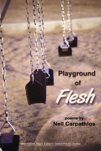 BookPlaygroundFlesh-200x300